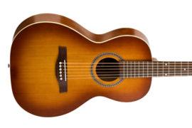 Rental-Seagull-Grand-Entourage-Guitar-1