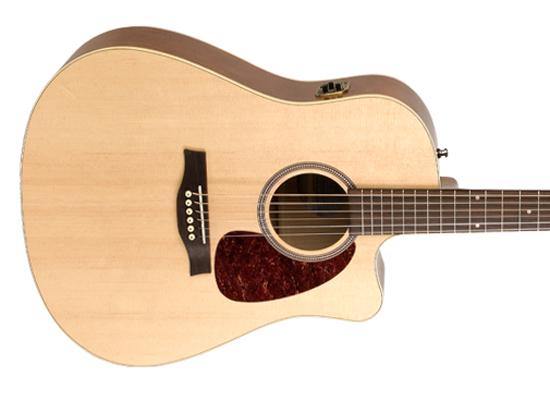 Rental-Seagull-Dread-Pickup-Guitar-1