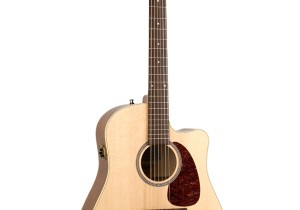 Rental-Seagull-Dread-Pickup-Guitar-2