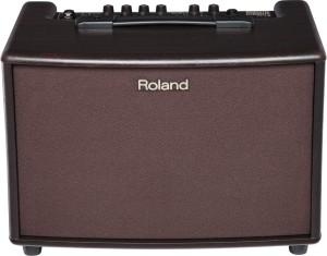 Roland AC 60-RW Amp (1)