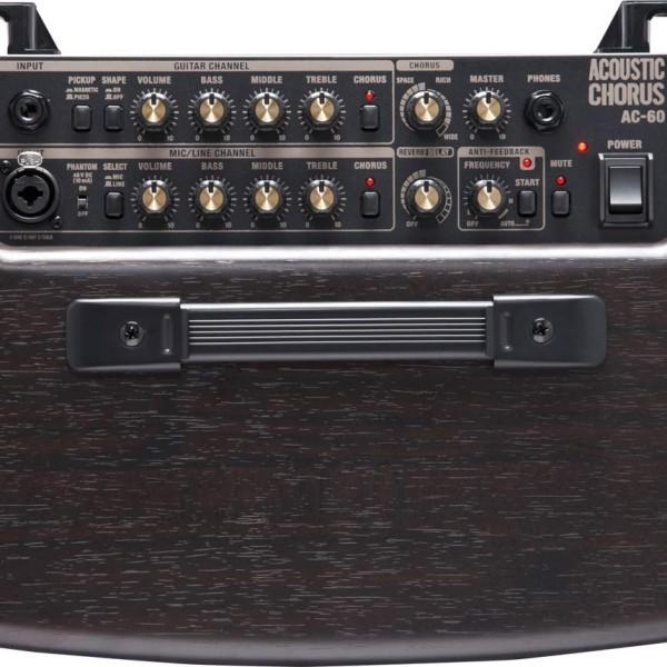 Roland AC 60-RW Amp (2)