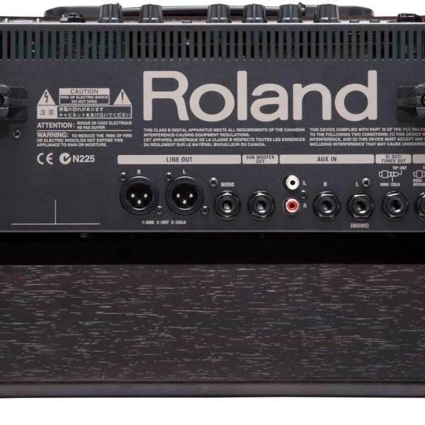 Roland AC 60-RW Amp (3)