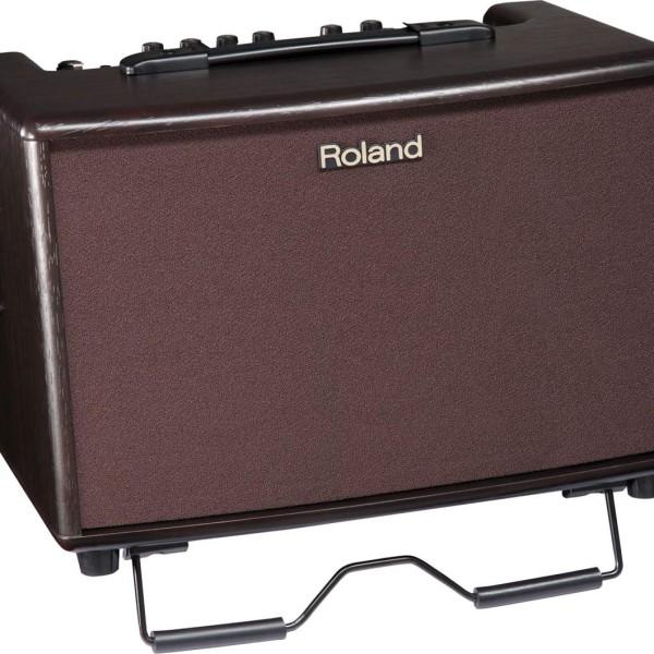 Roland AC 60-RW Amp (4)