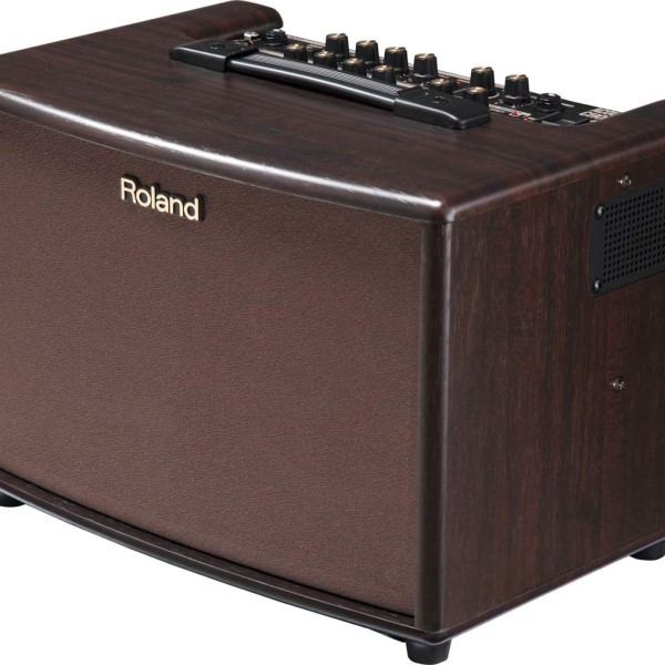 Roland AC 60-RW Amp (5)
