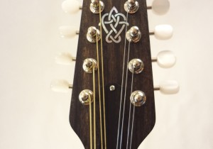 Weber 2 Point Bitterroot Mandolin Headstock Front View