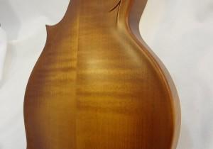 Weber Bitterroot F-Style Mandolin Back Close Up View