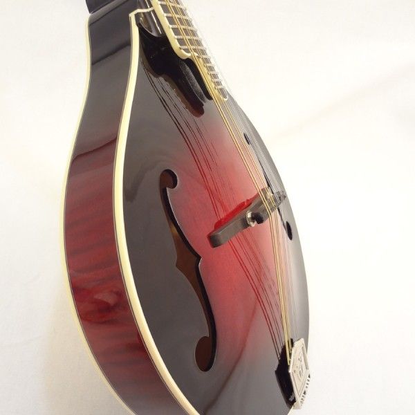 Weber Yellowstone A-Style Mandolin Soundhole View 2