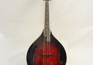 Weber Yellowstone A-Style Mandolin Full Front View