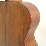 C.F. Martin Lefty Acoutic Guitar SWOMGT-L Back Detail