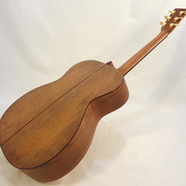 C.F. Martin Lefty Acoutic Guitar SWOMGT-L Angled Back