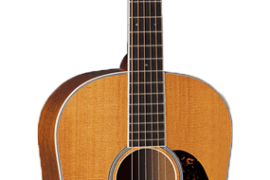 C.F. Martin D-222 - 100th Anniversary Acoustic Guitar Front