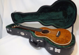 Kala Gloss Tenor Uke with Case