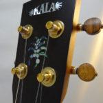 Kala Gloss Tenor Uke Headstock