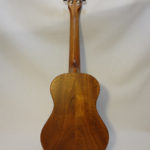 Kala Tenor Uke Back Body Full