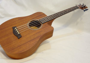 M-BASS25 Front Full Angled