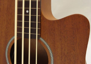 M-BASS25FL Fretboard Close 2