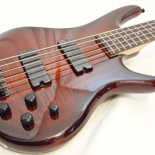 Ibanez GSR250-5MCNB Front Angled