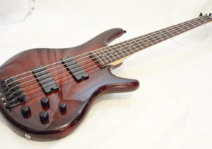 Ibanez GSR250-5MCNB Front Full Angled