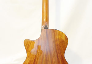 Taylor-314C3_USED Back Full