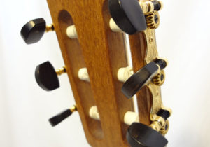 Peter Barthell Classical Guitar (1)