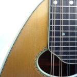 Weymann Mandolute Mandolin Soundhole