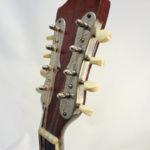 Weymann Mandolute Mandolin Front Headstock
