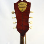 Weymann Mandolute Mandolin Back Headstock