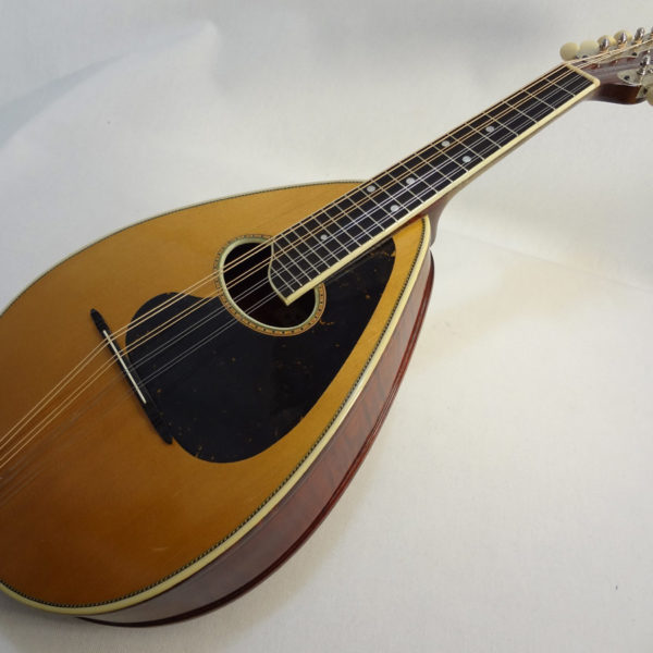 Weymann Mandolute Mandolin Angeld View