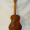 Kala Gloss Tenor Uke Back Body Full