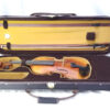 Scott Cao Violin Outfit STV-017E with Case