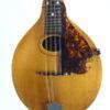 Gibson A - Mandolin 1916 Pickguard