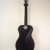 Journey Carbon Fiber Travel Guitar Full Back