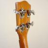 Ohana Solid Cedar Top Concert Uke CK-50G Tuners