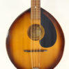 The Flatiron Mandolin Mandola Front View