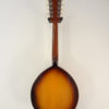 The Flatiron Mandolin Mandola Full Back