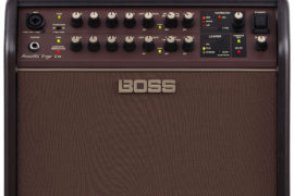 Boss Acoustic Singer Amp Front View