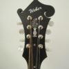 Weber Red Rocks F-Style Mandolin Headstock