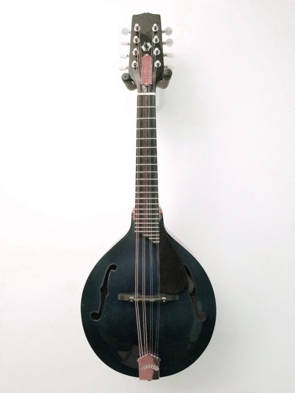 2008 James Curtis Mandolin Front
