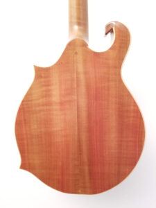 Blues Hardware Custom Mandolin Back View