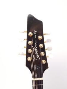 Used Godin A8 Electric Mandolin Headstock