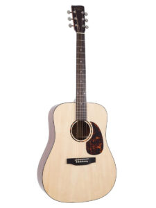 Recording King Dreadnought Afffordable Acoustic Guitar Front View