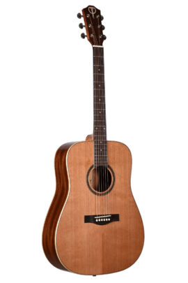 Teton STS105NT Dreadnought Cedar Top Guitar Front
