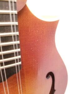Weber Bitteroot F-Style Mandolin Pick Wear