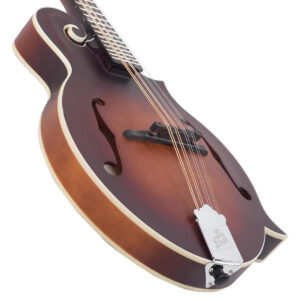 The Loar F-Style Mandolin LM-310F-BRB Angled View