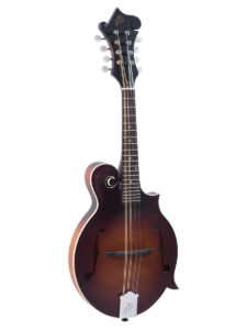 The Loar F-Style Mandolin LM-310F-BRB Front View