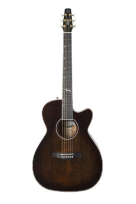 Seagull Artist Mosaic Acoustic Guitar 047741 Front
