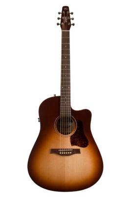 046478 Seagull Entourage Guitar Full Front View